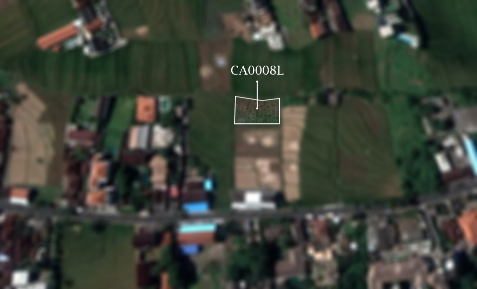 Canggu land for sale leasehold nice