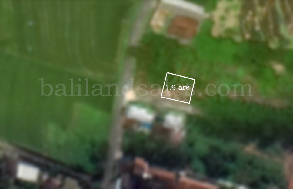 cheap small plot of land in canggu for sale