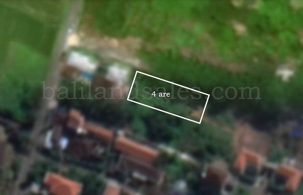 Leasehold Land in Canggu, nice and cheap